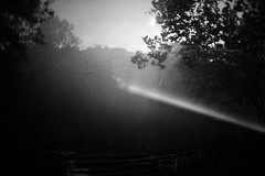 FrightFest_050 (allen ramlow) Tags: fright fest six flags san antonio texas halloween horror sony a6500