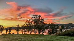 Shot on iPhone (Eric Dugan) Tags: iphone 7 burning sky dawn november glencovepark