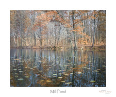 Mill Pond (baldwinm16) Tags: in indiana autumn fall lake midwest nature pond water