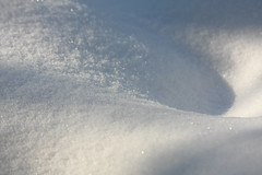 CKuchem-0855 (christine_kuchem) Tags: frost garten gemüsegarten glanz kristall natur naturgarten nutzgarten privatgarten schneekristall winter frostig funkelnd funkelt glänzend kalt leuchtend natürlich schnee weis