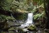 IMG_5404.jpg (sandm0nkey) Tags: hobart waterfall tasmania australia mountfield au