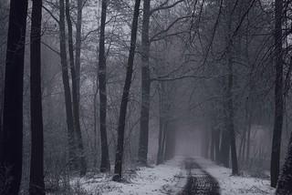 Der Weg...