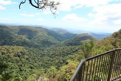 Springbrook National Park (Mitch Thorburn) Tags: springbrook national park gold coast hinterland mitch thorburn