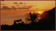 Barba Roja (mnovela2293) Tags: manuelantonio parque nacional costaricapacifico barbaroja