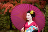 Mameryu - Maiko in Kyoto 01 (JUNEAU BISCUITS) Tags: maiko geisha kyoto gion kimono garden japan beauty grace portrait portraiture nikond810 nikon umbrella