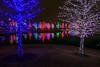 20141221vitruvianpark_023-2.jpg (Dr. Hilton Goldreich) Tags: xmas vitruvianpark christmaslights lights