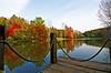 Autumn Colors (EAO72) Tags: lake pond reflection autumn fall colors colorful trees forest deck göl yansıma sonbahar güz streetphotography orman