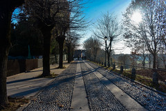 The Street (CesareZucco) Tags: street road trees alberi town sun sky cielo nature città natura morimondo light sunlight luce beauty italia nikon medieval