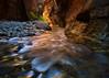 Zion Narrows (Joaquin James Javier) Tags: zion national park narrows virgin river flow rush reflection gold light canyon fall autumn