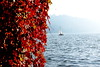 DSC_3749_00154_MOD (sicca85) Tags: nikon nikond7200 iamnikon piemonte piedmont orta lago ortasangiulio autunno autumn tamron