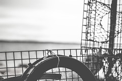 Cedar neck, MV (awalkintothefray) Tags: usa america igbliss way2ill depthobsessed visualambassadors artofvisuals justgoshoot nature travel wanderlust exploreeverything explore mountains cliffs natureworld hiking beachday beach girl cute blackandwhite bnw exposure eyes portraits moodyports moodyportrait