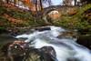 Foley's Bridge (Hibernia Landscapes (sjwallace9)) Tags: autumn ireland tollymore foley bridge longexposure