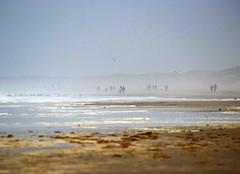 Autumn at the beach (Jaedde & Sis) Tags: hennestrand beach mist fog challengefactorywinner thechallengefactory beginnerdigitalphotographychallengewinner bdpc perpetualwinner friendlychallenges gamewinner gamex2