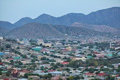 Part of the green city (hanaomar3) Tags: borama awdal somaliland somalia eastafrica hornofafrica somali city home summer mountains sky photography outdoor boorama borame boorame cloud hill landscape mountain mountainside field grassland night moon fullmoon full papaya mango tree valley acacia plant grass road mosque masjid camel africa amoud sunset sunrise canon hills seeraha africans weather flowers restaurant hotel valleys riverbed sheep goats lake pond mountainview