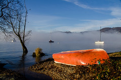 Autumn atmosphere on the Italian Lago Maggiore (Phototravelography) Tags: angera autumn fccautumn italia italy lagomaggiore lombardia lombardy ranco ambiance atmosphere blue boat fog lake mood morning red sun tree vibe sky landscape cof002dmnq water cof002 fccfog