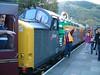 37240 and friends. (Mr Corbett's stuff) Tags: 37240 llangollen kelloggs class 37 diesel loco