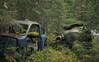 - ein Stern geht unter - (mariburg) Tags: rotten marode alt old rostig rustycars canonef2470mmf28liiusm canoneos6d auto mercedes
