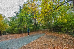 1338__0589FLOP (davidben33) Tags: brooklyn 718 ny quotnew yorkquot quotprospect parkquot autumn 2017 fall trees bushes leaves lake pets gooses ducks water sky clouds colors yellow green blue people quotstreet photosquot