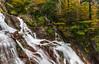 Aguas de otoño (sostingut) Tags: d750 nikon otoño rojo verde amarillo seda