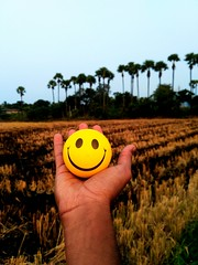 If u d power 2 make someone smile ☺ do it.. D world🌐 needs more of dat👍💭  #letsstartnow #tosmile #smile #giveit #to #need #wheat #crops #cultivation #smiley #stress #releaver #redmi3sprime📷 #shot #mi #n (soultaker8) Tags: mi giveit releaver trees smiley nature tosmile instagram follow behind instagramhub follow4follow crops stress smile wheat shades photography standtall naturephoto need photo vscofilter instagood letsstartnow redmi3sprime followme vsco shot cultivation