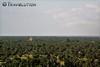 View from Phnom Dai Mae Mountain, Kampong Chhnang (Travolution360) Tags: cambodia kampong phnom dai mea mountain viewpoint kambodscha palm trees countryside cambodge chhnang