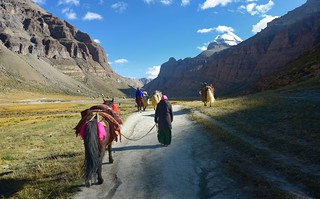The appeal of Kailash, Tibet 2017