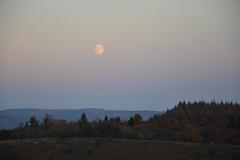 Moonset (boutot) Tags: landscape sunrise moon colors horizon countryside green field moonset big sky correze monedieres boutot