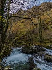 Gave-Panorama (Coline Buch - http://coline-buch.fr/) Tags: 2017 64 aquitaine aquitainelimousinpoitoucharentes colinebuch france gave lasoule larrau paysbasque pyrénéesatlantiques campagne extèrieur extérieur montagne nature tourisme