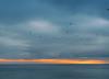 30.11.17 (Kirby_Wilson) Tags: settingsun sunset grey clouds sea öresund sweden råå cold winter