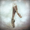 Pique (Spoken in Red) Tags: dancing ballerina ballet surlespointes enpointe chacott coppelia tulleskirt tulleballetdancing bokeh texture performingarts dancer piqueturn pointeshoes spokeninred jenniferrhoadesphotography ironmaidens square