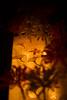 20171103 Mino 1 (BONGURI) Tags: 美濃市 岐阜県 日本 jp leaf leaves 葉っぱ autumn fall 秋 japanesemaple maple mapleleaf 紅葉 モミジ もみじ gingko イチョウ 銀杏 light art lightingart 明かり 灯り あかり アート あかりアート streetoflightingart あかりの町並み minojapanesepaperartfestival creativelantern japanesepaper 美濃和紙あかりアート展 美濃和紙 和紙 mino 美濃 gifu 岐阜 nikon d3s afsnikkor50mmf18gspecialedition