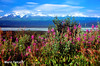 U.S.: Alaska: between  Delta Junction and Paxon along Richardson HW (mariofalcetti) Tags: unitedstates alaska landscape mountains water