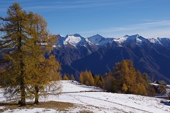 Stagioni (stefano.chiarato) Tags: autunno autumn alpi alpe alpelusentino piemonte italy estate inverno panorami landscape montagne mountains neve pentaxart pentax pentaxlife pentaxk70