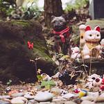 猫神社 thumbnail