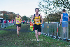 DSC_0230 (Adrian Royle) Tags: mansfield berryhillpark sport athletics running racing relays xc crosscountry ecca nationalcrosscountryrelays athletes runners action clubs park autumn nikon