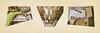 Snippets: Lotti, my Father, me: Which one is the biggest potato? Harvest Erdäpfel Kartoffel abwiegen abwägen Vonwegen auf Abwegen! Ausgewogen im Garten waagrecht senkrecht Willkommen in der Welt des Backens Mozartkugeln Jamie Oliver Ofo .... (hedbavny) Tags: snippet cutout excerpt exzerpt schnipsel ausschnitt bruchstück auszug scale weigh wiegen waage balance waagschale schale zeiger rechnung gewicht zahl ziffer kugelschreiber schrift schreiben handschrift liste spiegel mirror spiegelung stillleben stilllife table tisch glastisch glas glass dekor decoration flower blume schnittblume blühen verblühen portrait porträt garten garden gardening lotti lottchen allotment ernte harvest potato kartoffel erdäpfel puzzle jigsaw herbst autumn zeitung newspaper oldtimer fahrrad rad kalender versatzstück kerze candle teelicht hedbavny ingridhedbavny wien vienna austria österreich