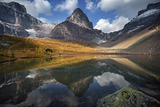 'The Last Hoorah' - Larch Valley, Banff National Park
