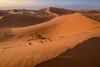 Sea of Sand (pdxsafariguy) Tags: morocco desert sand dune ergchebbi africa sunset arid sahara merzouga erg landscape orange dry pattern tomschwabel