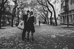 Bratislava (MattusB) Tags: street streetphotography bratislava slovakia november couple dates autumn bw blackwhite monochrome monochromatic two person bag trees leaf leafs walkside wide angle prime lens sony a6000 sigma 30mm documentary slovensko 2017 lightroom adobe mirrorless