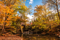 Gold Brook (Nicholas Erwin) Tags: autumn goldbrook emilysbridge coveredbridge goldbrookcoveredbridge nature naturephotography fall water brook harvest trees forest stowe waterburycenter vermont vt unitedstatesofamerica usa america nikon d610 nikkor 2018g fav10 fav25
