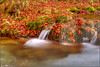 flow (Luciano Silei - sky7) Tags: autumn autunno colors arzino river waterfall water foliage longexposure ndfilter lucianosilei canon7d canon1740mm friuli