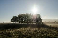 Marchastel, Lozère (lyli12) Tags: aubrac lozère languedocroussillon paysage landscape leverdesoleil campagne france nikon d7000