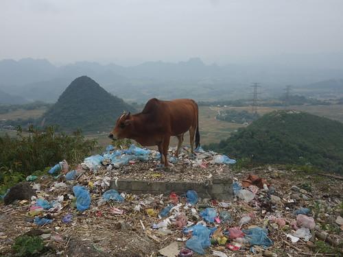 On trouve souvent des déchets au bord des routes, ici pour aller à Mai Chau