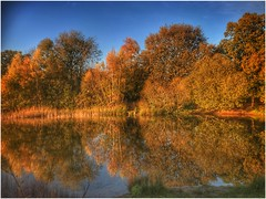 So Still The Water (Andy Stones) Tags: silica pond nature park reserve water still reflection autumn autumnal afternoon branches daylight exposure image imageof imagecapture sky trees uk views weather yaddlethorpe scunthorpe lincolnshire nlincs northlincs naturephotography openwater