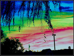 Edited Sunset Created On November 13, 2017 - From A Photo Taken On October 16, 2017 - All Work by STEVEN CHATEAUNEUF (snc145) Tags: silhouette blue green red pink black photo editedimage creative artistic processing pretty colorful landscape scenery outdoor autumn fall seasons october162017 november132017 stevenchateauneuf