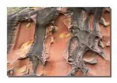 Geoformas XXII (PhotoStudio37) Tags: geoformas arenisca labetxu jaizkibel valledeloscolores