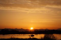 Off Over the Horizon_0129 (Mike Head - Jetwashphotos) Tags: fraser fraserriver bc britishcolumbia canada westerncanada coastalarea