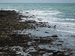 DSCN5359 (Marcin Lichowski) Tags: ireland irish marcinlichowski lichowski style europe green esmeraldisland kilmorequay sea irishsea