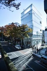 Dior Omotesando (Pop_narute) Tags: dior shop store retail omotesando tokyo japan autumn sunny day building architecture design