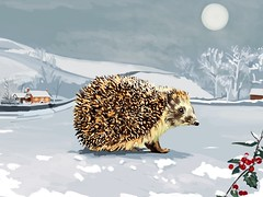 A Magical 'Yuletide by Moonlight' Christmas Card by Plumkin.Art (Plumkin) Tags: night moonlit moonlight magical celebration traditional view white winter snow yuletide hog hedgehog digitalhanddrawings greetingcards plumkinart christmascard xmas christmas